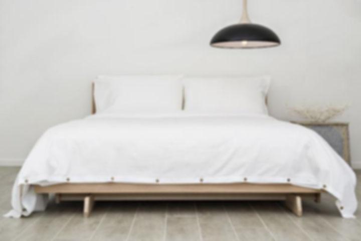 organic duvet / comforter