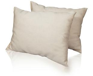 organic pillows.jpg