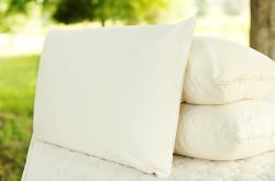 Savvy Rest Soap Shaped Pillow