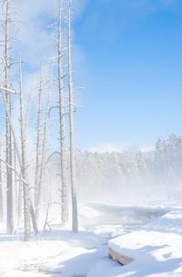 Karen Yellowstone (4 of 7).jpg