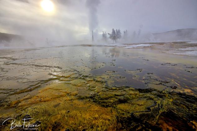 Bob Falcone - YellowstoneBiscuitBasinFBw