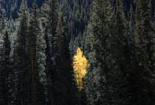 Colorado 3.jpg
