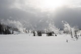 Nancy Panicucci Roma - Yellowstone 2020-