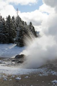 Karen Yellowstone (5 of 7).jpg