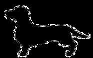 32007867-stock-vector-dachshund-dog-vect