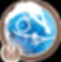AdvB_transparent-293x300.png