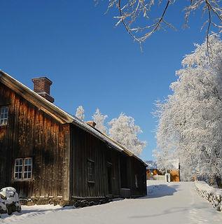 Stenberg vinter