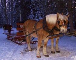 Alvin and Leroy with sleigh