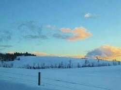 field view winter