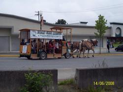Seafest Parade