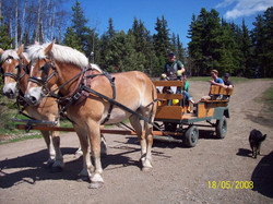 summer wagon ride