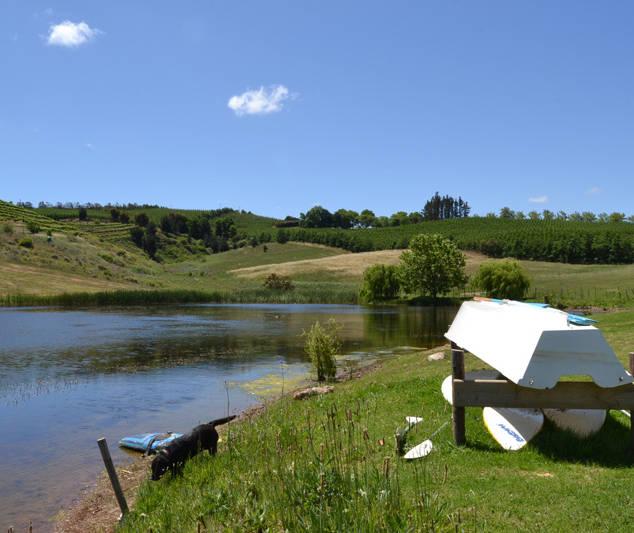 Wallowvale Dam (14).jpg