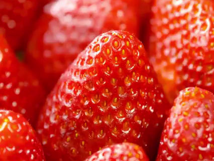 Quick facts about strawberries!