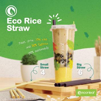 eco rice straw_square (1).jpg