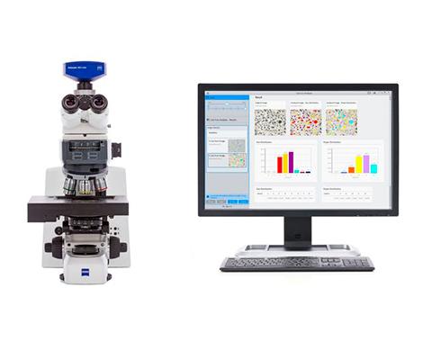 ZEISS Axioscope Microscope