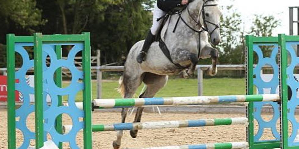 Course ( show jump) Practice