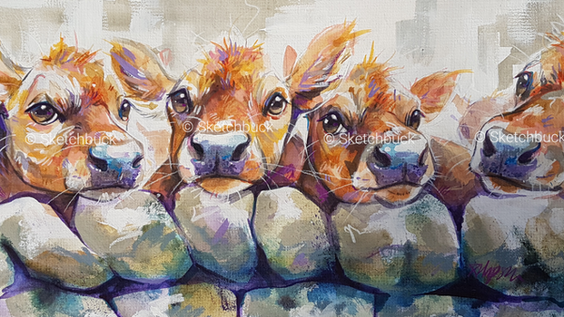 A watercolour painting of a collection of 4 golden, jersey cows looking curiously over a dry stone wall.