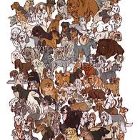 101 Dogs.jpg