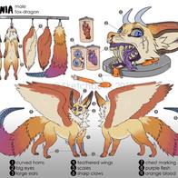 resized_black_Fox Dragon Reference Sheet