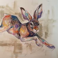 Running Hare.jpg