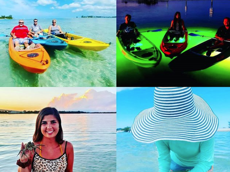 """Have the Best Summer Ever with our Top """"Must-Do's"""" in SWFL!"""