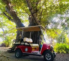 Boca Grande gold cart guided tour glass
