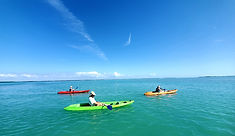 Guided Kayak and SUP Eco Tour Boca Grand