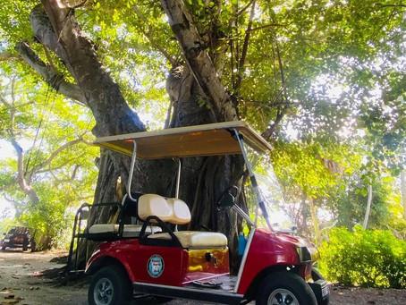NEW- Golf Cart Tours!