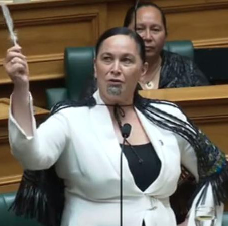 Maori Party v the rest of us