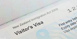 Visa Type.jpg