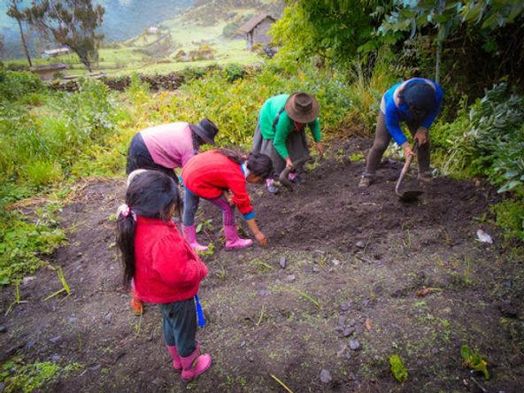 Juntos y Foncodes fortalecen las capacidades de jóvenes en zona rurales
