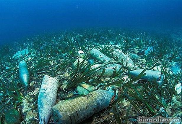 La contaminación en el fondo del océano es 25 veces mayor a lo considerado