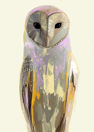 Jasper the Barn Owl