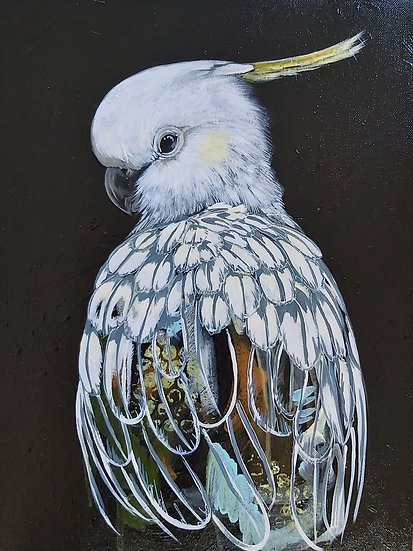 Clive the Cockatoo