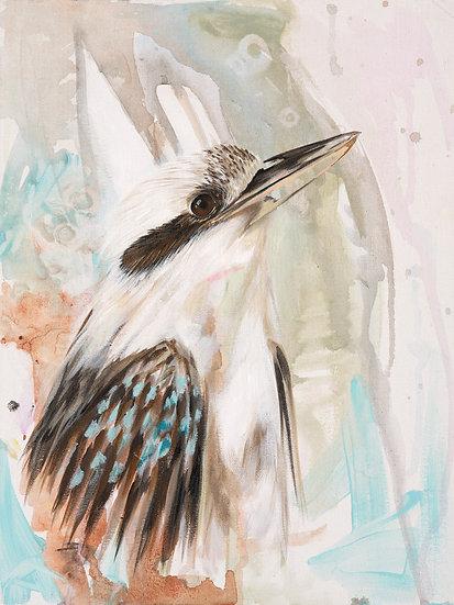 Cale the Kookaburra