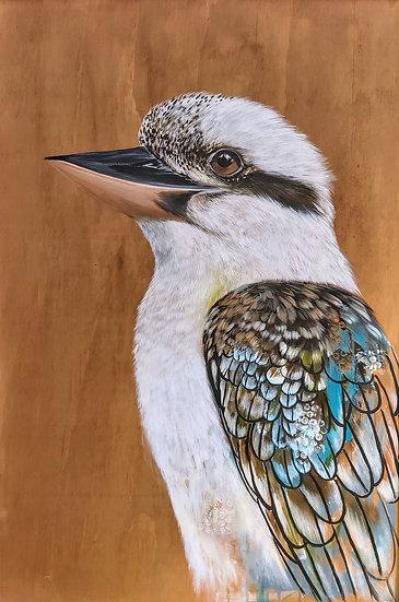 Lucky Kookaburra