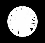 Logo - expanded frame.tif