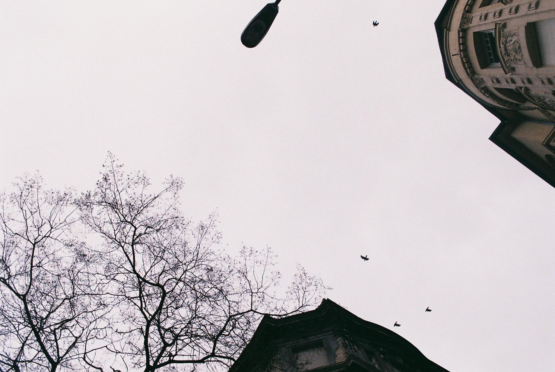 1.2_Budapest_19