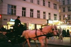 12.31_Wien_22