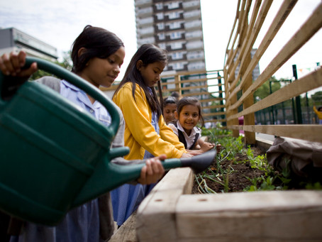 How Can Food Growing Benefit Outdoor Teaching?