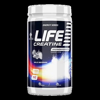 TREE OF LIFE Creatine (400г)