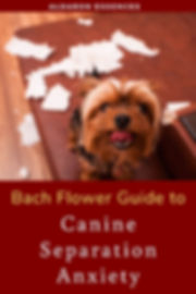 bach-flower-remedies-separation-anxiety-