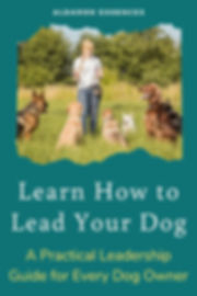 role-of-leadership-in-dog-training (4).j