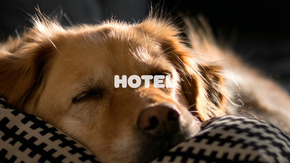 capa_hotel.jpg