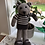 Thumbnail: Brownly bear in stripes