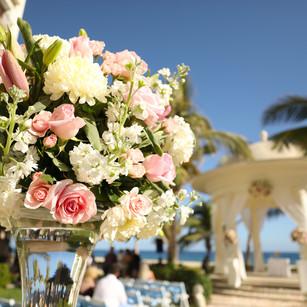 Hyatt Ziva Los Cabos Weddings 232A6315.j