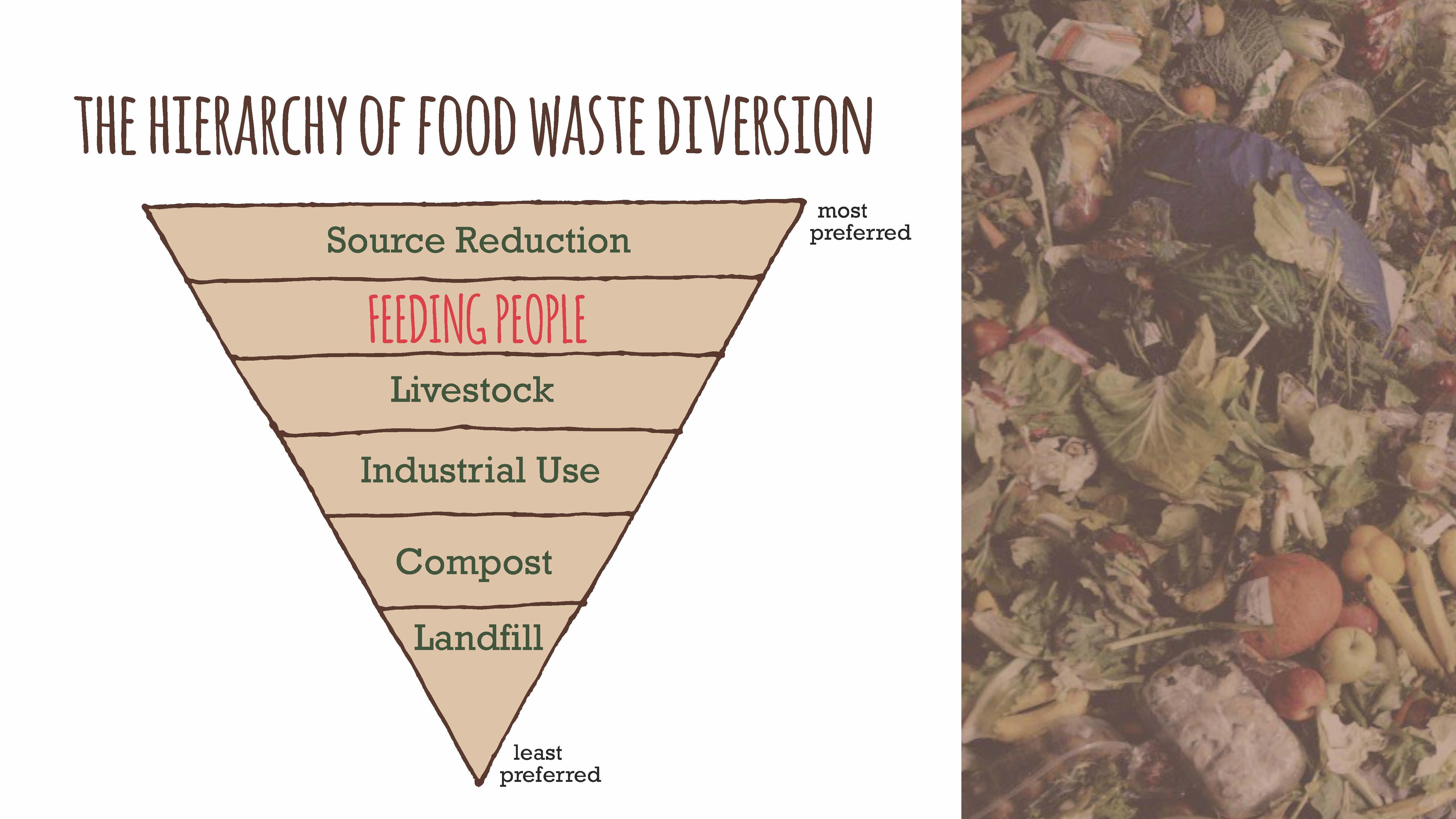 food waste 12