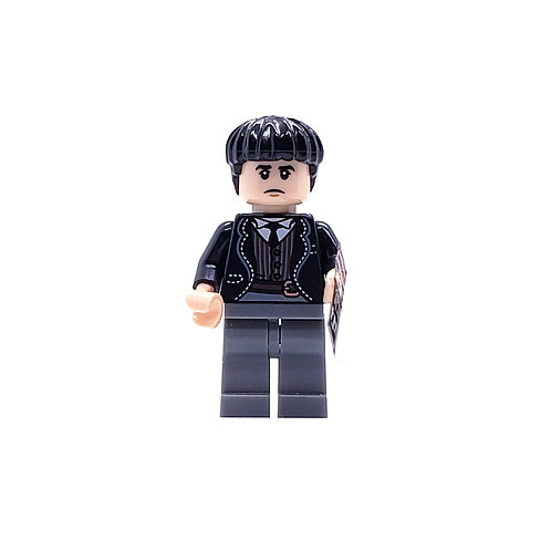 Credence Barebone - LEGO Harry Potter and Fantastic Beasts Series 1 - (71022)