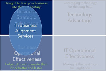 IT Business Priority Matrix labels it bu