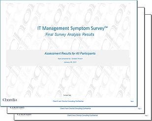 IT Management Survey Final Report Mockup